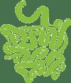 intestines-icon