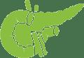 pancreas-icon